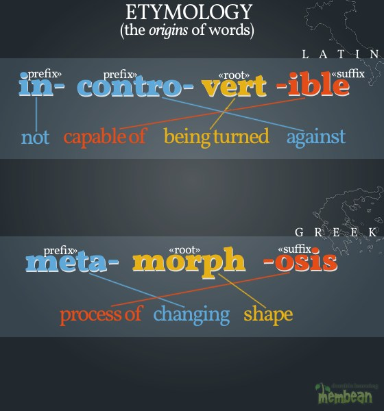 what is the meaning of etymology